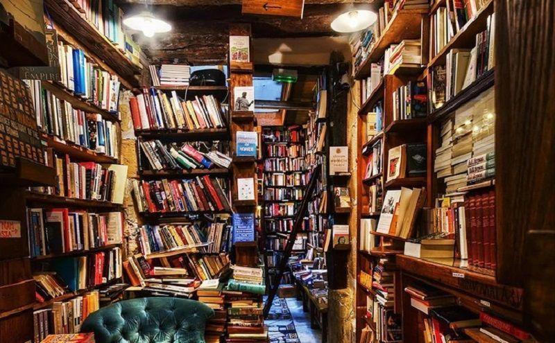 biblioteca1 1
