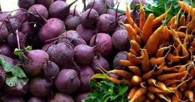 verduras3 1