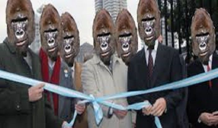 ¿Qué es un Gorila?