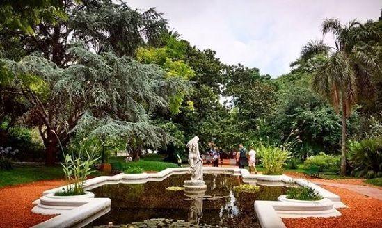 Jardin botanico2
