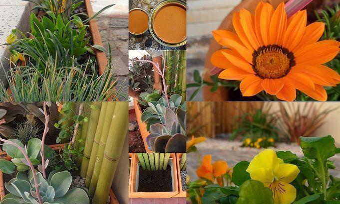 plantas flores jardin