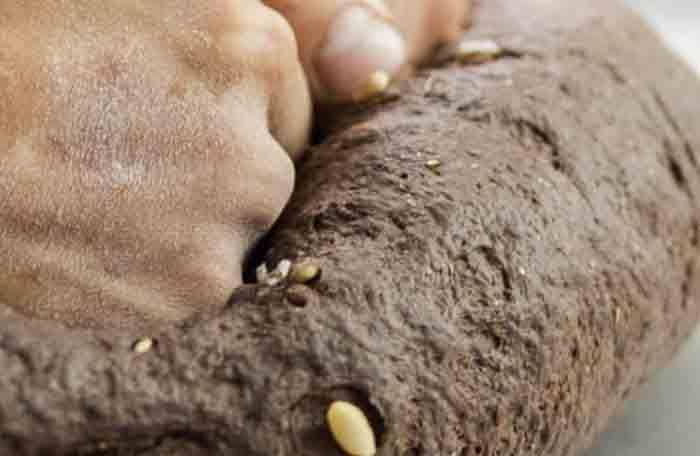 bagel de algarrobo1