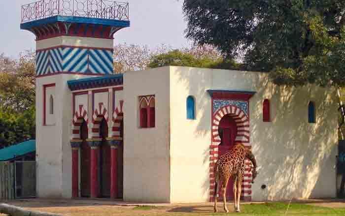 india zooecoparque1