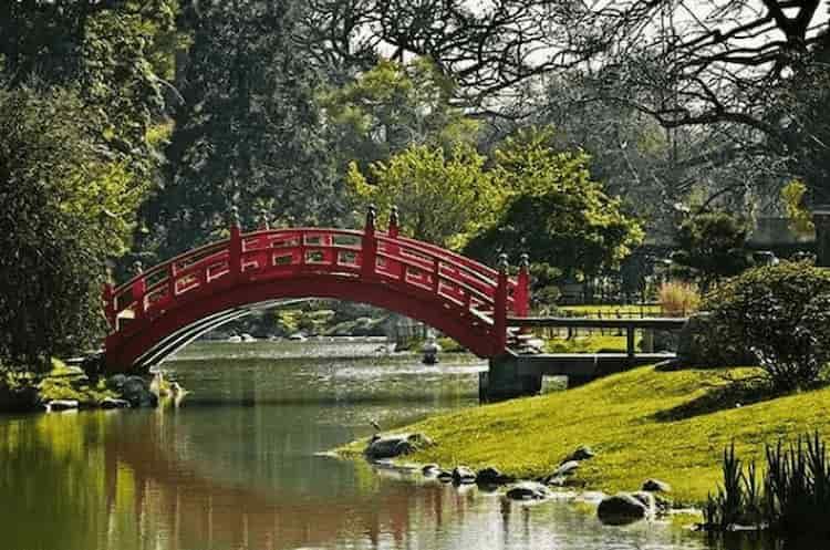 jardin japones2